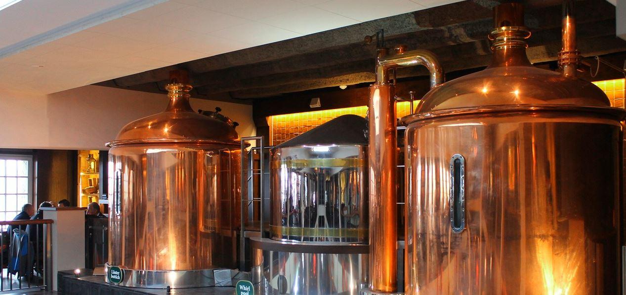 La fermentation de la bière