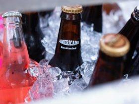Peut on congeler la biere quelle est la température de consommation optimale de la bière
